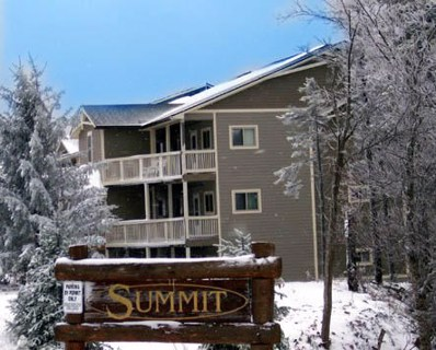Summit, Snowshoe, WV 26209 - #: 18-1154