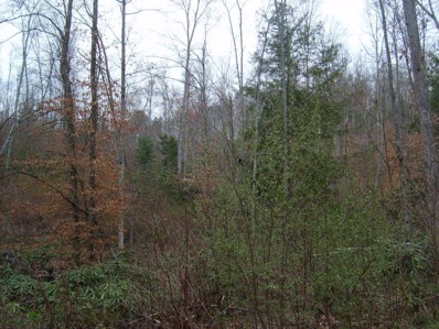 Private Forest Drive, Dunmore, WV 24934 - #: 18-146