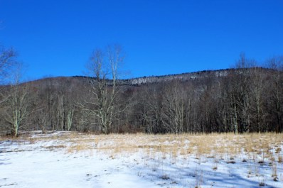 Back Mountain Road, Cass, WV 24927 - #: 18-312