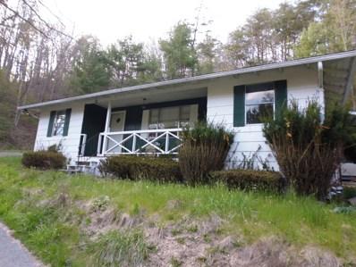 Trail Lane, White Sulphur Springs, WV 24986 - #: 18-748