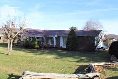 6246 Potomac Highlands Trl, Green Bank, WV 24944 - #: 19-1601