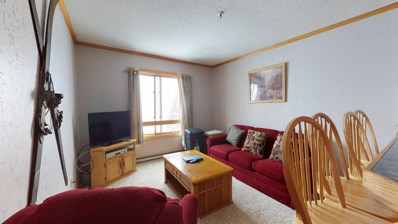 114 Top Of The World, Snowshoe, WV 26209 - #: 19-1732