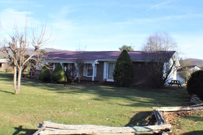 6246 Potomac Highlands Trl, Green Bank, WV 24944 - #: 20-1009