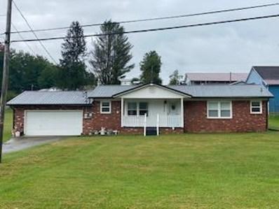 19736 W Webster Rd, Craigsville, WV 26205 - #: 20-1318