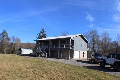 7312 Back Mountain Rd, Durbin, WV 26264 - #: 20-1737