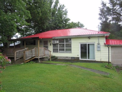 33 Dade Road, Nettie, WV 26681 - #: 20-802