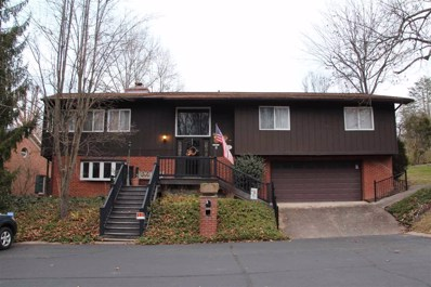 10 Partridge Court, Huntington, WV 25705 - #: 161769