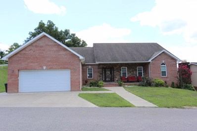 208 Orchard Drive, South Point, OH 45680 - #: 162380