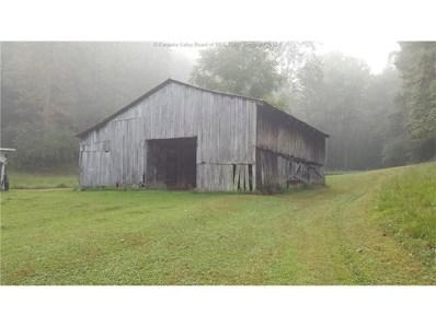 199 Long Branch, Hamlin, WV 25506 - #: 219988