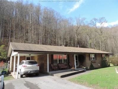 11971 Coal River Road, Whitesville, WV 25209 - #: 221532
