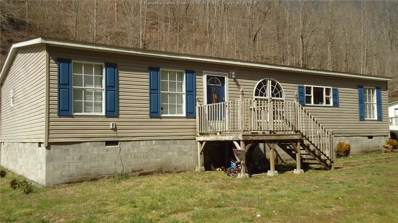 423 Marley Acres Drive, Verdunville, WV 25649 - #: 225396