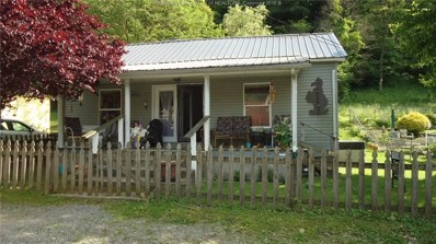 58 Briarwood Hollow Road, Holden, WV 25625 - #: 225566