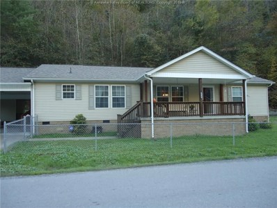 610 Accoville Hollow Road, Accoville, WV 25606 - #: 226566
