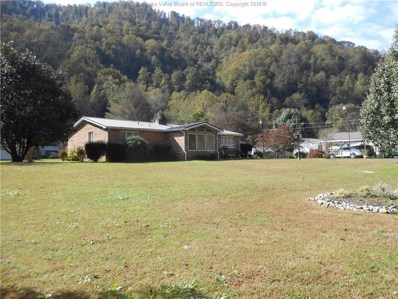1138 Autumn Lane, Davin, WV 25617 - #: 226638