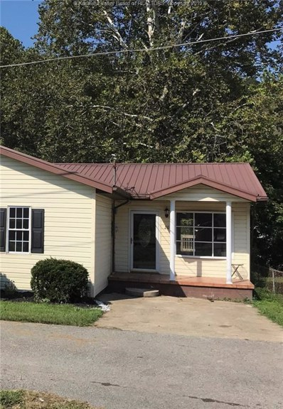 20 Rick Bowling Alley, Chapmanville, WV 25508 - #: 228005