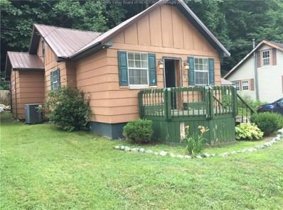 1088 E Seng Creek Road, Whitesville, WV 25149 - #: 228031