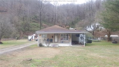 101 Highlawn, Mallory, WV 25634 - #: 228721