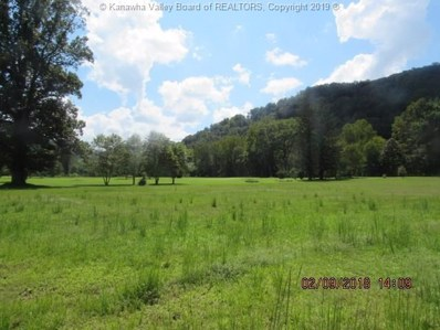 715 LINCOLN Highway, Chapmanville, WV 25508 - #: 228827