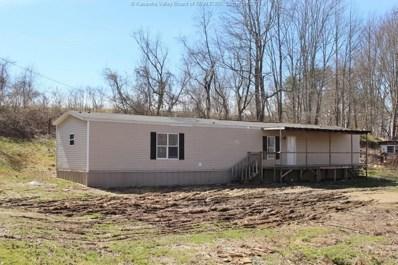 163 Dry Ridge Road, Milton, WV 25541 - #: 228893