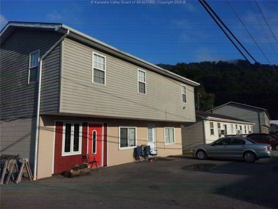 143 High Water Street, Chapmanville, WV 25508 - #: 236429