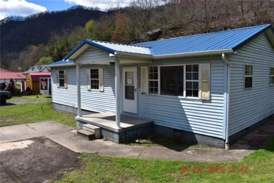 2335 Buffalo Creek Road, Accoville, WV 25606 - #: 238024