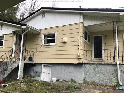 25 Summer Lane, Williamson, WV 25667 - #: 238089