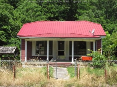 1792 Route 65, Matewan, WV 25678 - #: 241737