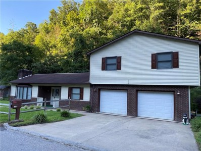 665 View Avenue UNIT 1, Chattaroy, WV 25667 - #: 241886