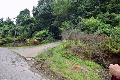 585 Tin Can Hollow Road, West Columbia, WV 25287 - #: 245401