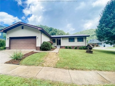394 Yeager Drive, Williamson, WV 25661 - #: 248252