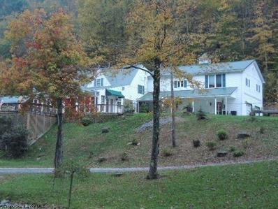 489 Slab Camp Road, Grafton, WV 26354 - #: 10099999