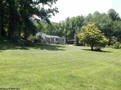 65 Homestead Drive, Birch River, WV 26610 - #: 10109416