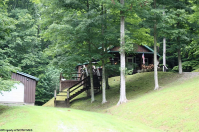Perkins Fork Road, Sutton, WV 26601 - #: 10110149