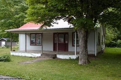 597 Curtin Road, Webster Springs, WV 26288 - #: 10118845