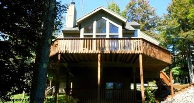 156 Treetop Lane, Davis, WV 26260 - #: 10119273