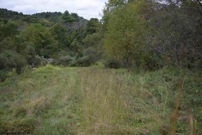 Brushy Fork Road, Hundred, WV 26575 - #: 10123327