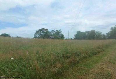 688 Henderson Ridge, Core, WV 26541 - #: 10124396