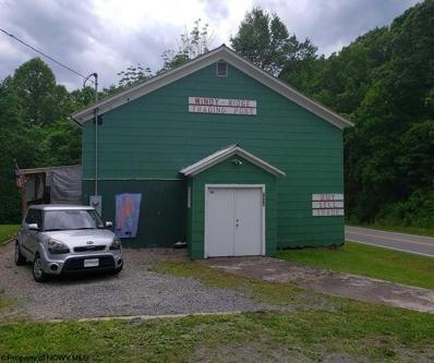 3934 N Windy Ridge Road, Hundred, WV 26575 - #: 10126968