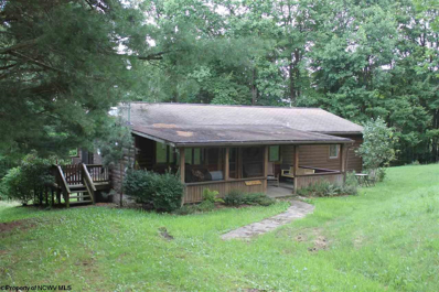 3635 Point Mountain Road, Webster Springs, WV 26288 - #: 10127410