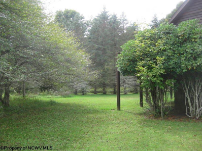 Lot 9 Red Spruce Lane Drive, Whitmer, WV 26296 - #: 10130686