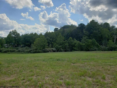 Tract A Jewel City Boulevard, Meadowbrook, WV 26404 - #: 10133374