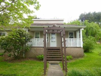 26 Penny Street, Pine Grove, WV 26419 - #: 10137095