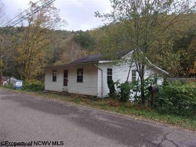 Hc67 Box 15 Church Fork Road, Hundred, WV 26575 - #: 10137895