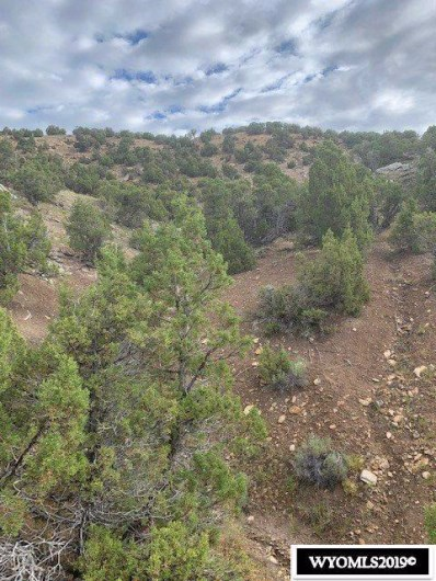 Lot 85 Red Canyon Road, Lander, WY 82520 - #: 20194727