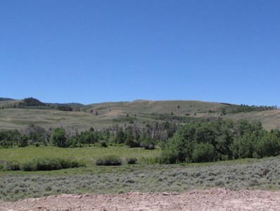 E Miller Mountain, Labarge, WY 83123 - #: 17-667