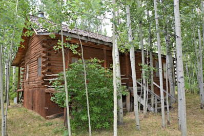 357 Walnut Drive, Star Valley Ranch, WY 83127 - #: 19-836